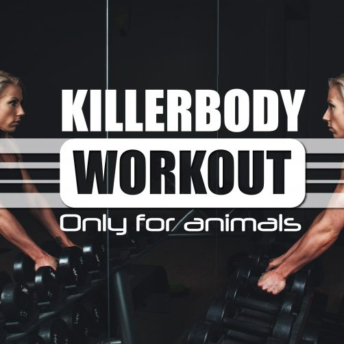 Killerbody workout - Body Empowerment